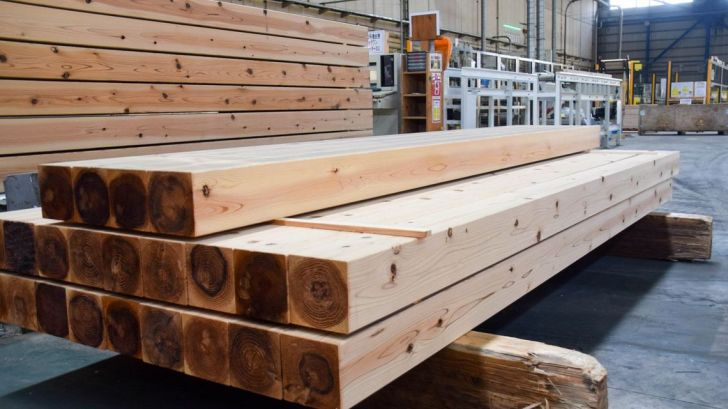 「木」の価格が平時の4倍に急騰…画像